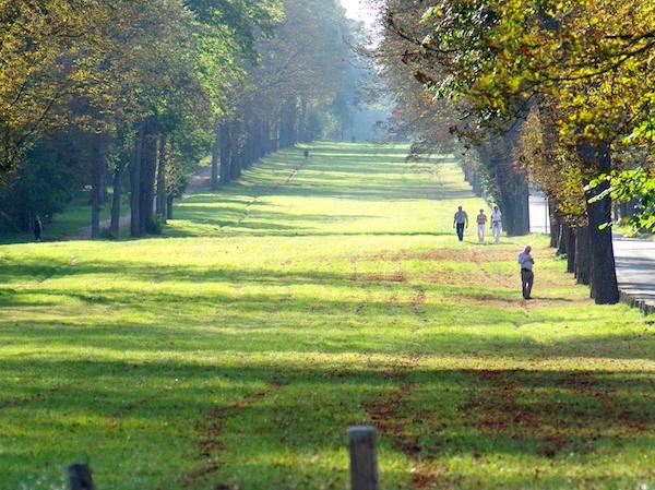 Allée de Marnes, Parc de Saint-Cloud © French Moments