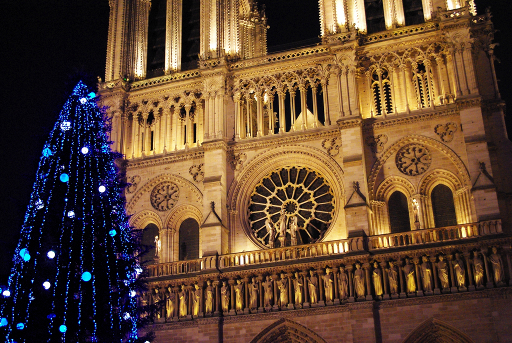 The Christmas Tree of Notre-Dame Cathedral - French Moments