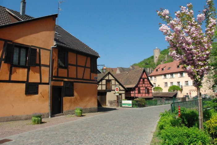 Kaysersberg Springtime 21 copyright French Moments