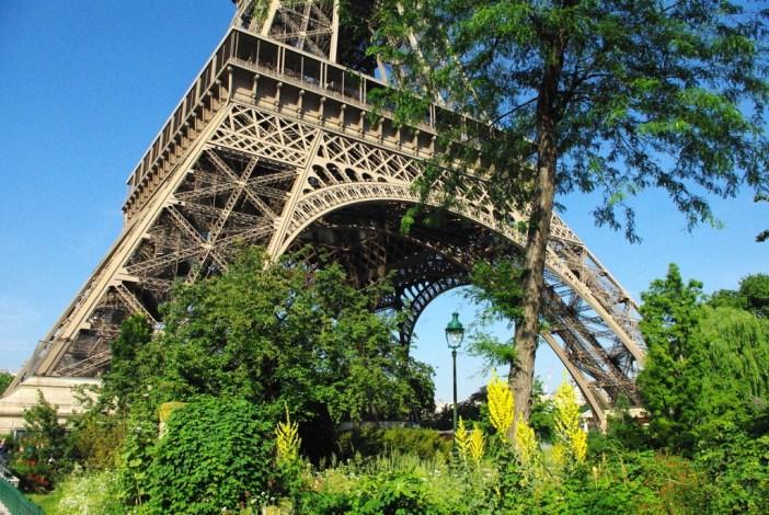 Champ de Mars Paris June 2015 23 © French Moments