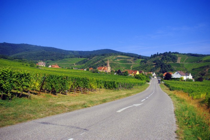The vineyards of Niedermorschwihr, Alsace © French Moments