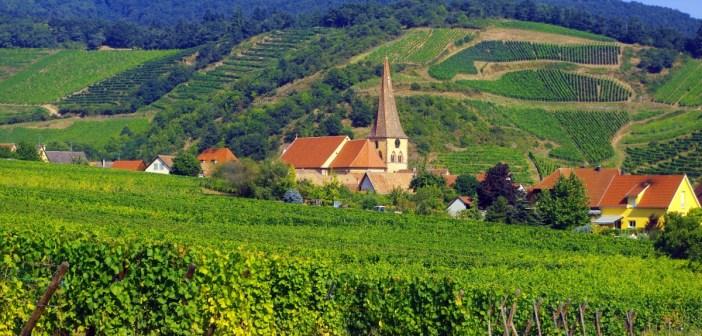 The vineyards of Niedermorschwihr © French Moments
