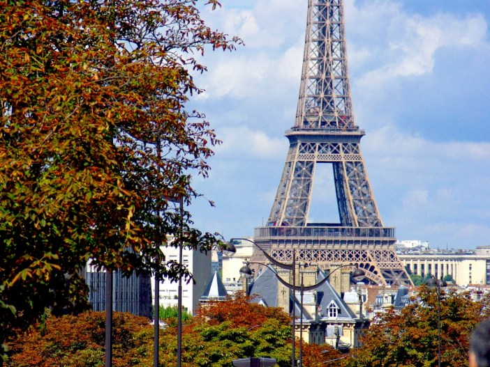 Boulevard Pasteur and Eiffel Tower © French Moments