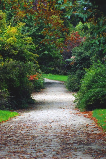 English Garden of Saint-Germain-en-Laye © French Moments