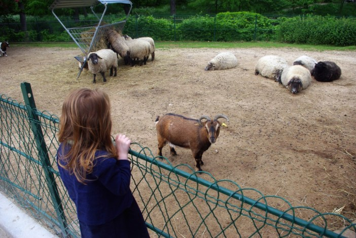 Aimée looking at the goats, Jardin d'Acclimatation © French Moments