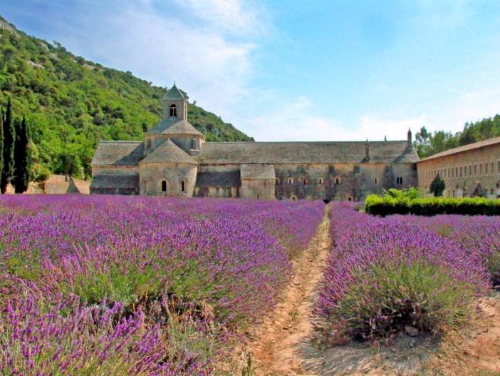 Sénanque Gordes Luberon Provence