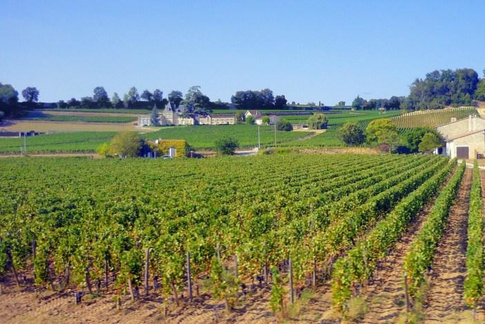 The vineyards of Saint-Emilion © French Moments