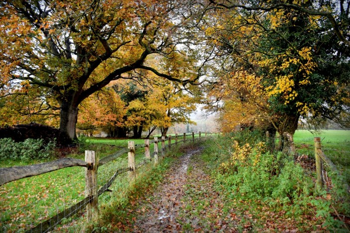An autumn walk in Burwash, East Sussex © French Moments