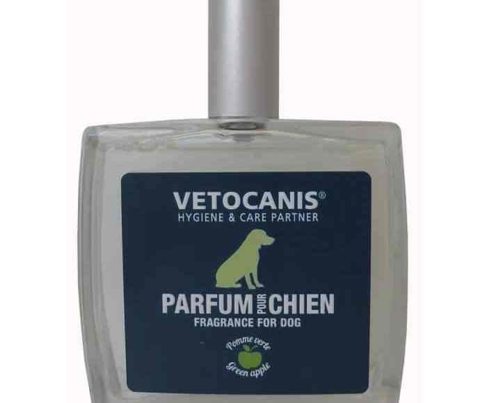 parfum-chien