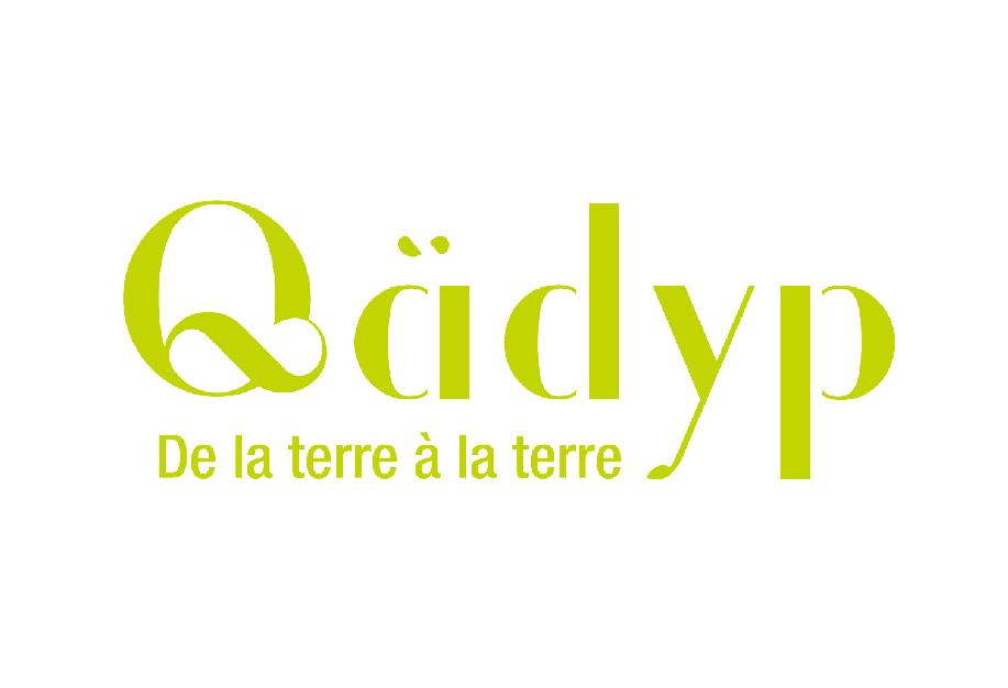 Qadyp