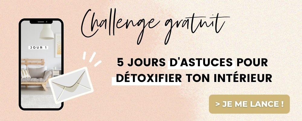 challenge-5-jours-pour-détoxifier-ton-intérieur