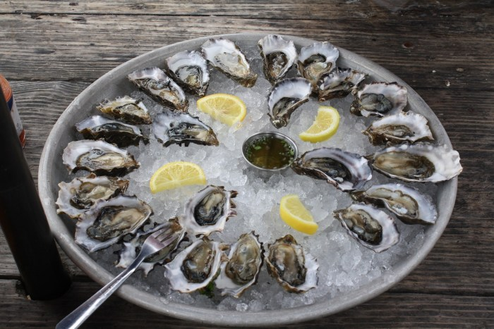 Tray of oysters on ice