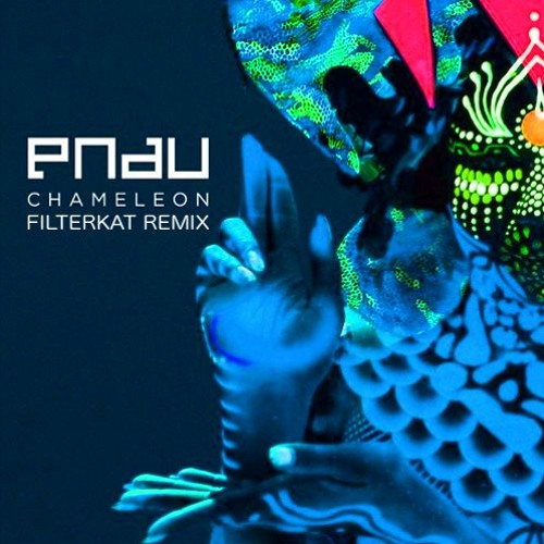 "Filterkat Puts His Take On PNAU's ""Chameleon"""