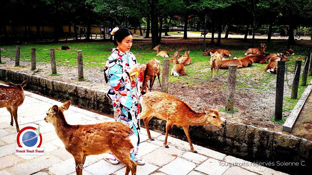 Série top kimono 1 - Japon Nara