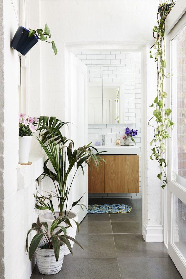 des plantes vertes dans la salle de bain frenchy fancy. Black Bedroom Furniture Sets. Home Design Ideas