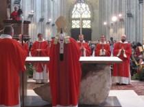 ordinations 8