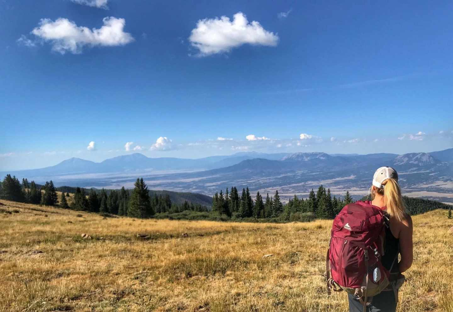 Moving back to Colorado from Whitefish, Montana