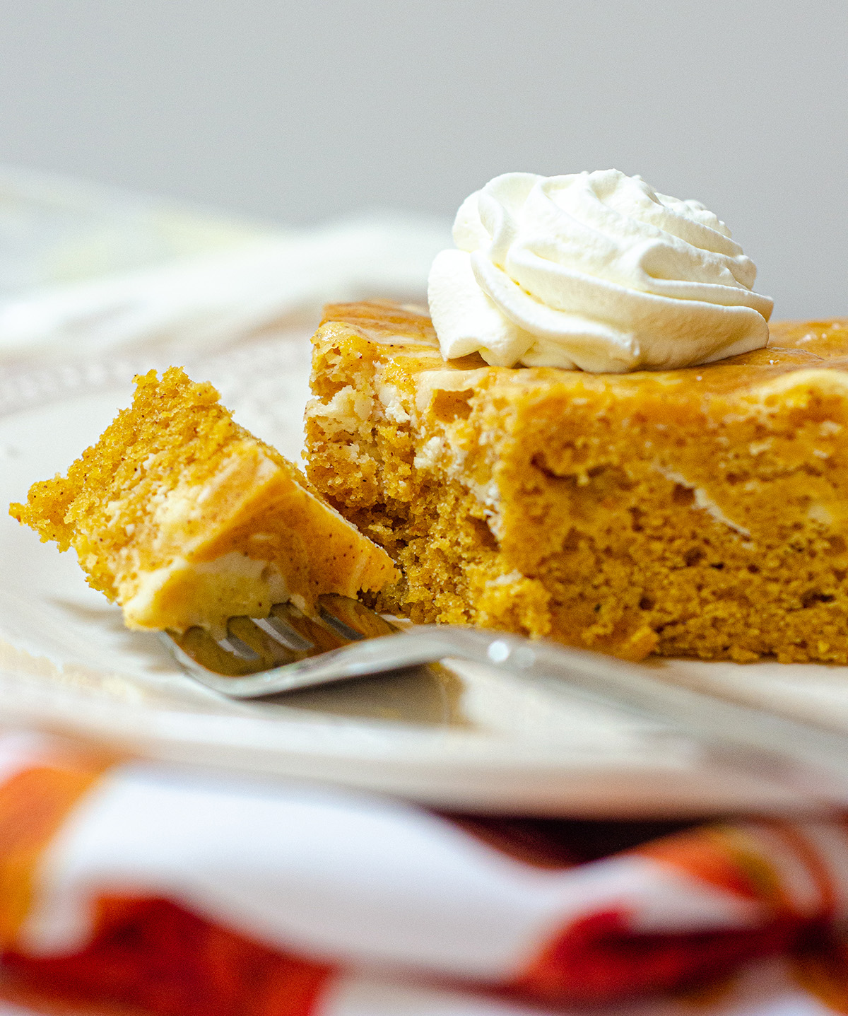 Dense and flavorful pumpkin cake swirled with sweet and creamy cheesecake.