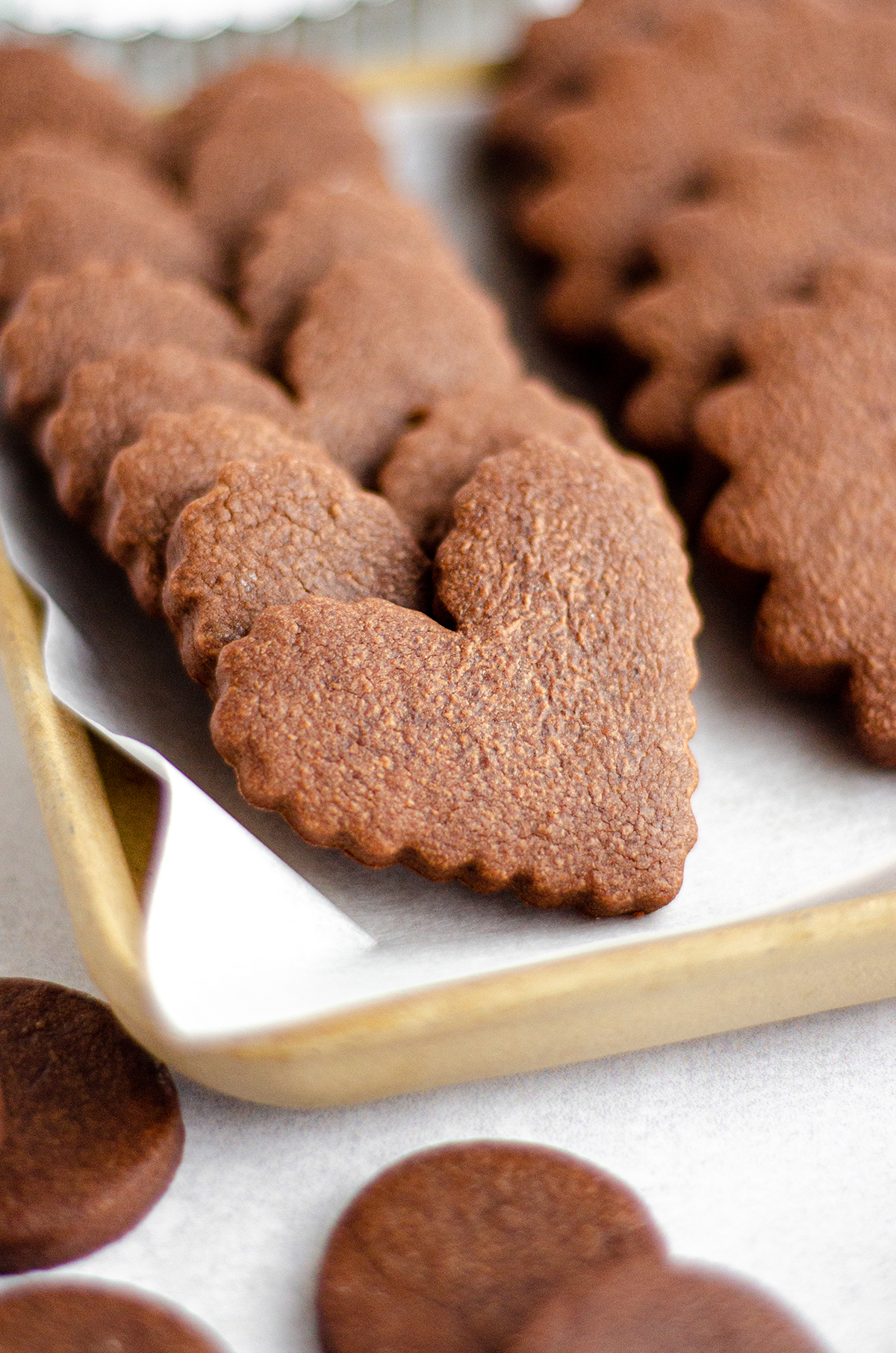 heart shaped undecorated chocolate cut-out sugar cookies on a plate
