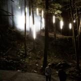 Moment Factory, Foresta Lumina, 2014