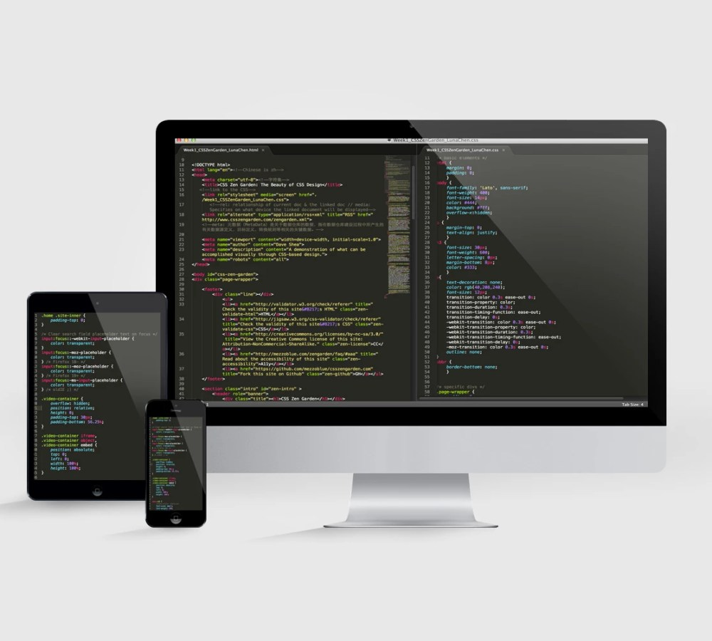 display screen mock up fresh canvas code
