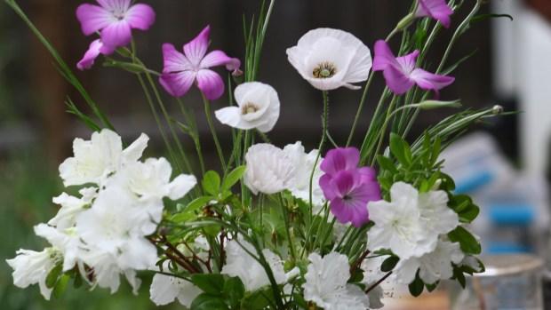 purple bouquet 012