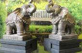 Elephant Statues Good Luck Facing Door According to feng shui