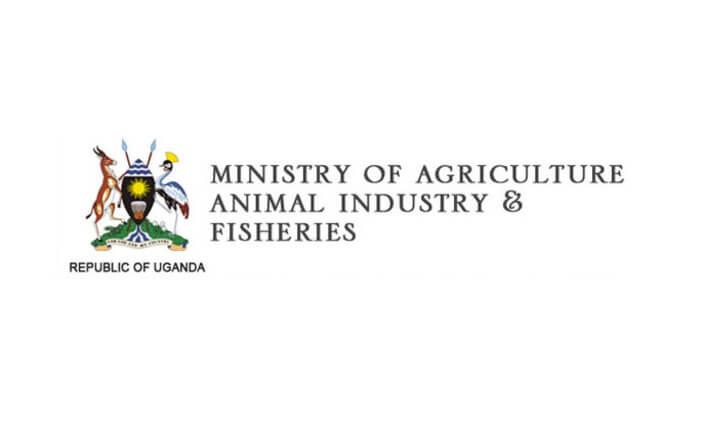 MAAIF Uganda Jobs 2021 MAAIF Jobs available driving jobs uganda