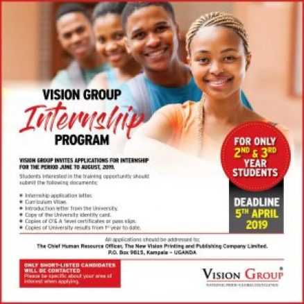 Vision Group Internship Program