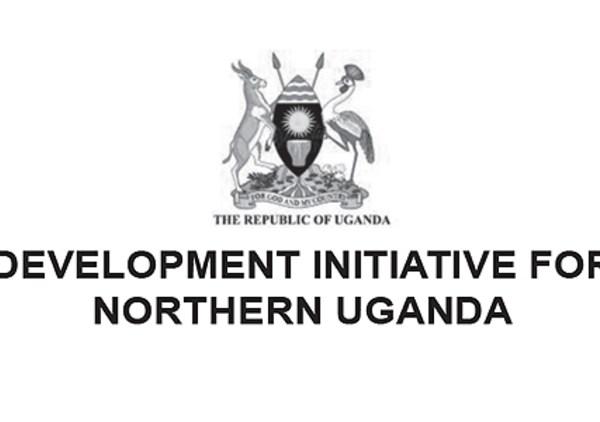 DINU Uganda Jobs 2020