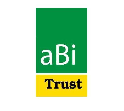 ABi Development Limited Jobs 2021