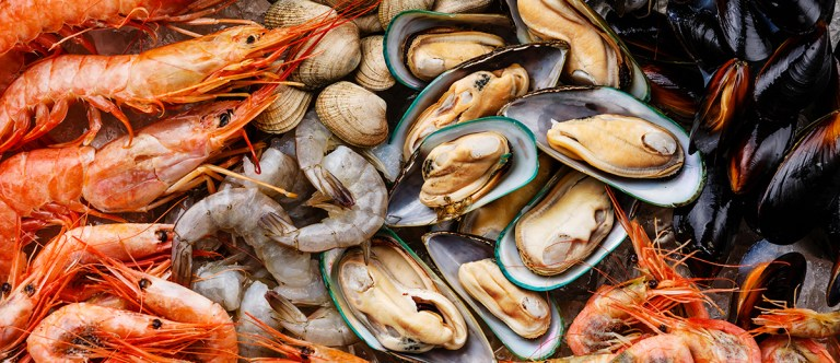 Shelf Life of Shellfish