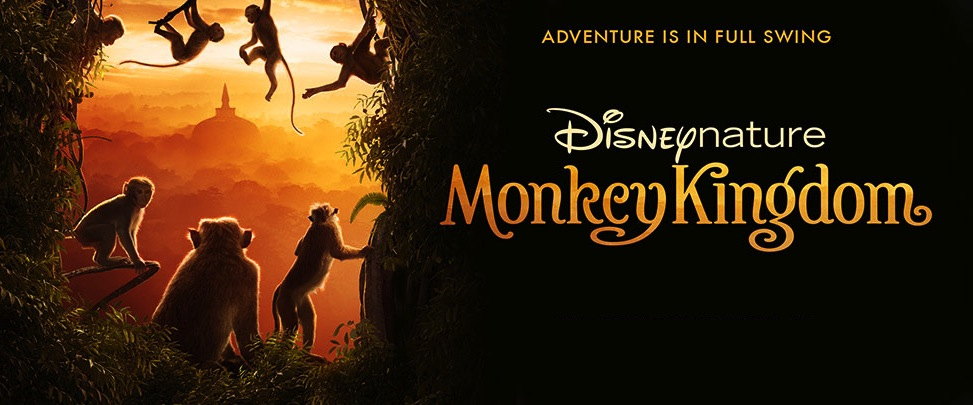 Movie Review: 'Monkey Kingdom' Takes Us On A Heartwarming Adventure
