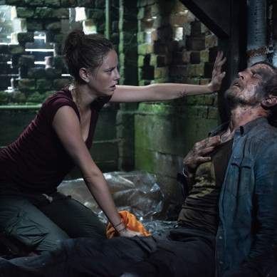 [REVIEW] 'CRAWL' puts the gory in allegory