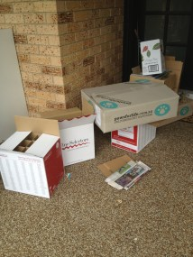Cardboard boxes. Thank you Wine Selectors and pawsforlife!