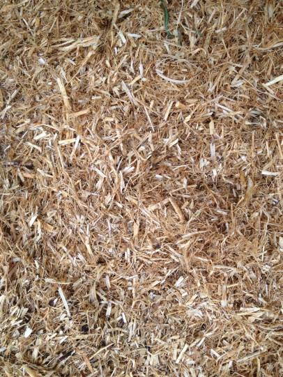 Pea straw. Smells like sawdust...
