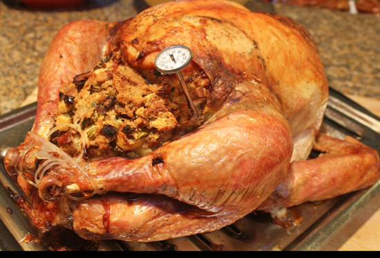 Roast Turkey with Fruit Stuffing