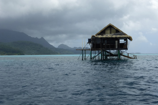Travelling in Tahiti and French Polynesia. More on FreshFoodinaFlash.com