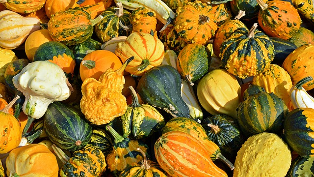 Winter squash picture from Pixabay.