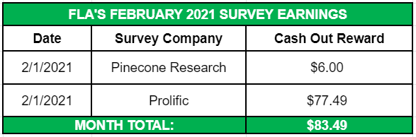 February 2021 Side Income Survey Earnings