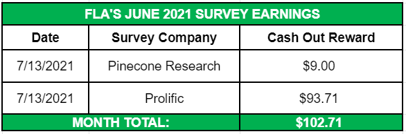 June Side Income 2021 Survery Earnings