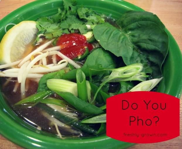 Do You Pho?