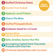 Christmas Nibbles Mini Cookbook Preview 1