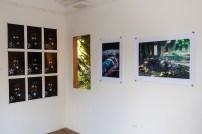 Exhibition at FRESH MILK XVI