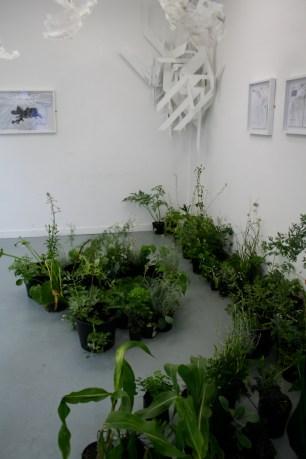 Lauren Craig, Hybrid, Installation Sculpture, Wood Plastic, Plants, Drawing, 32ft x 16ft (2010)