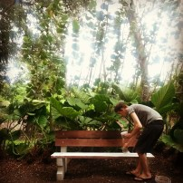 Evan Avery working on his bench at Fresh Milk