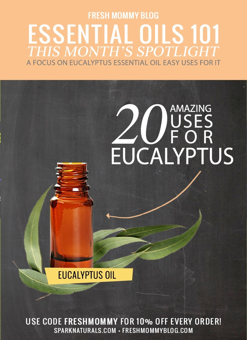 20 easy and practical uses for Eucalyptus essential oil in everyday life! - 20 Simple and Amazing Eucalyptus Oil Use by popular Florida lifestyle blogger Fresh Mommy Blog