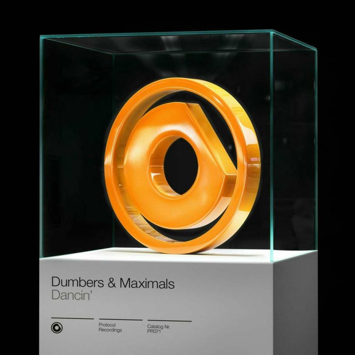 dumbers and maximals dancin cover