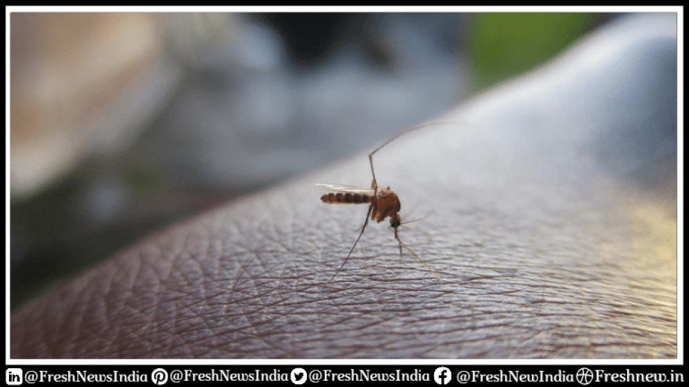 How does Zika Virus spread