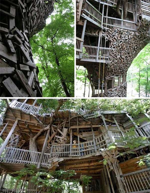 giant rustic tree home Worlds Largest Tree House